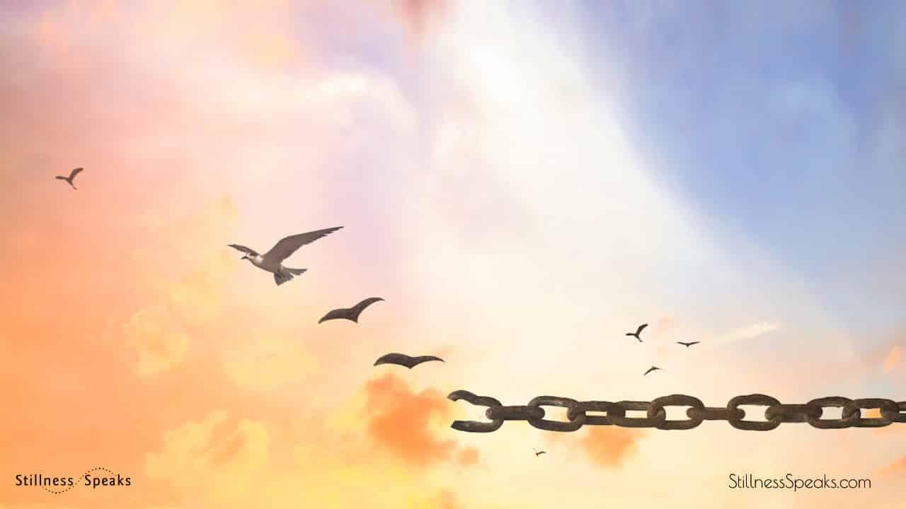 russell-forgiveness-seeds-OPT.jpg