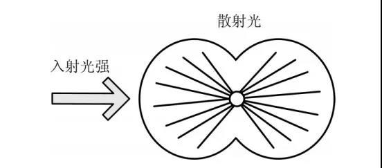 WeChat Image_20210316210426.jpg