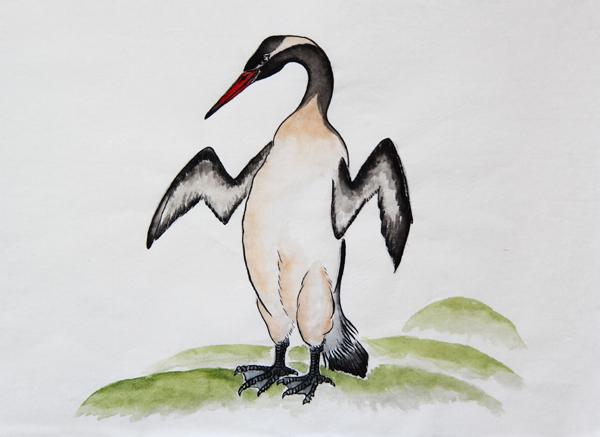 曼纳林威马努企鹅.JPG