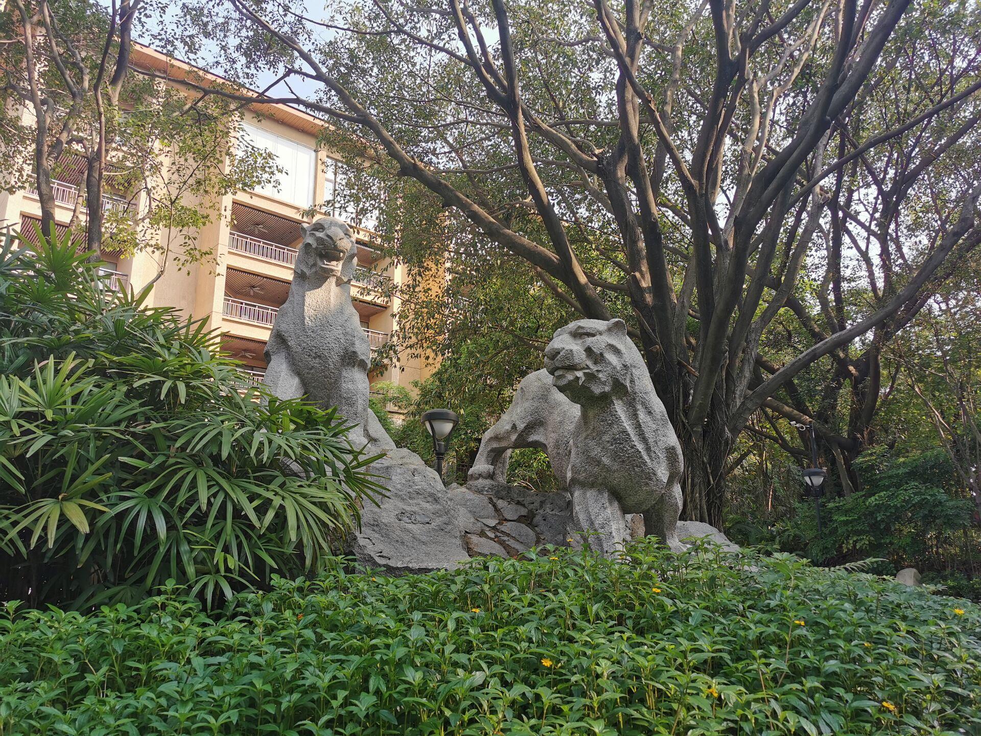 广州某宾馆庭院和周边08.jpg
