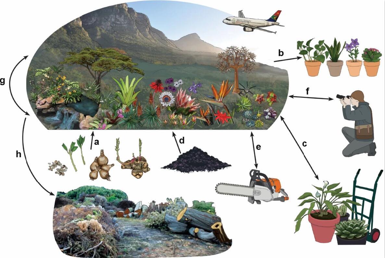 植物园与生物安全.jpg
