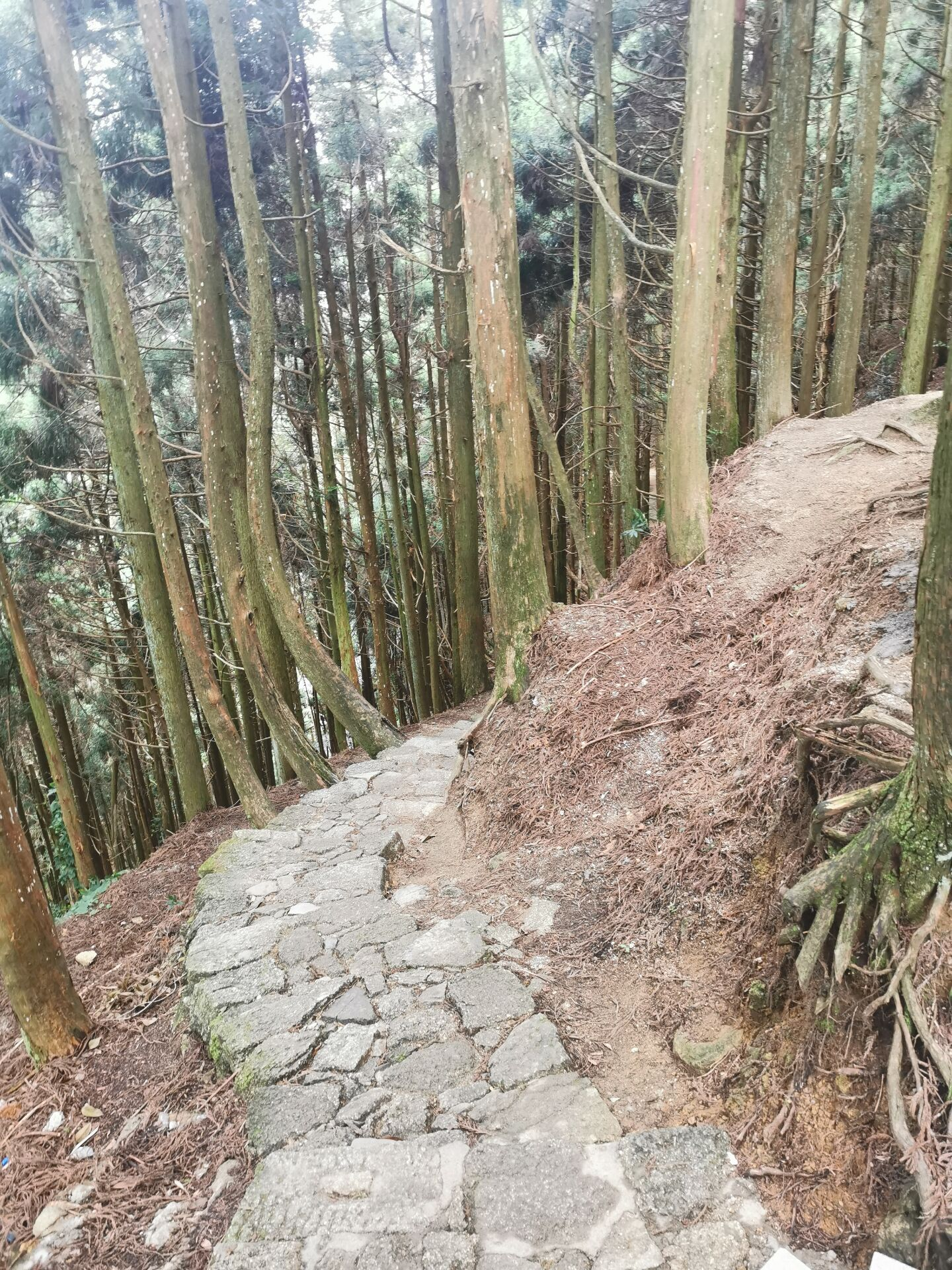 井冈山之黄洋界6.jpg