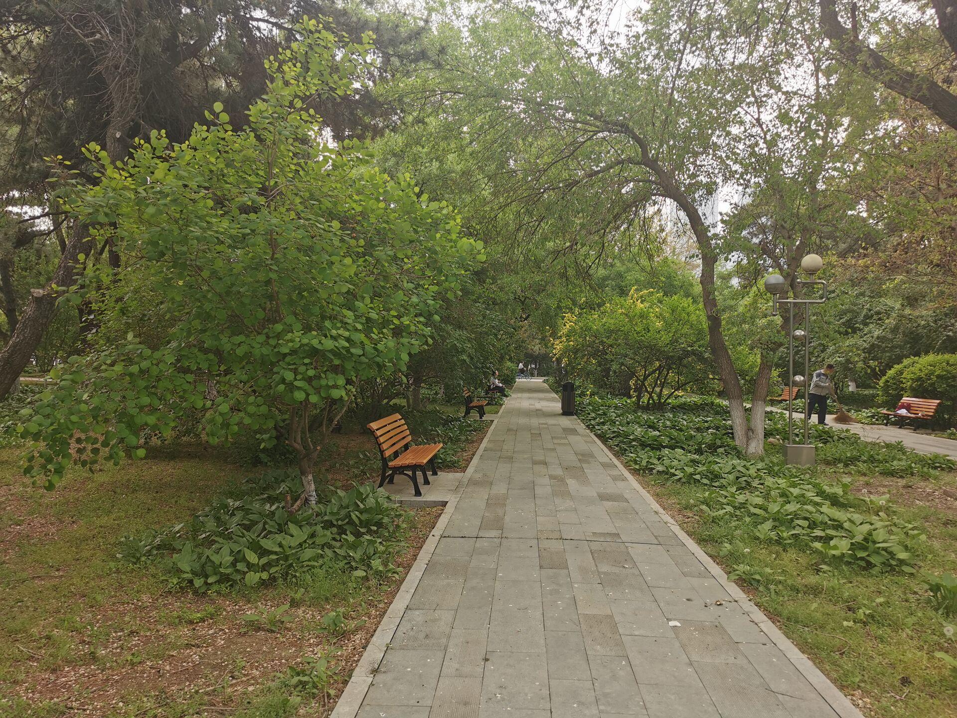 沈阳东北大学中心花园03.jpg