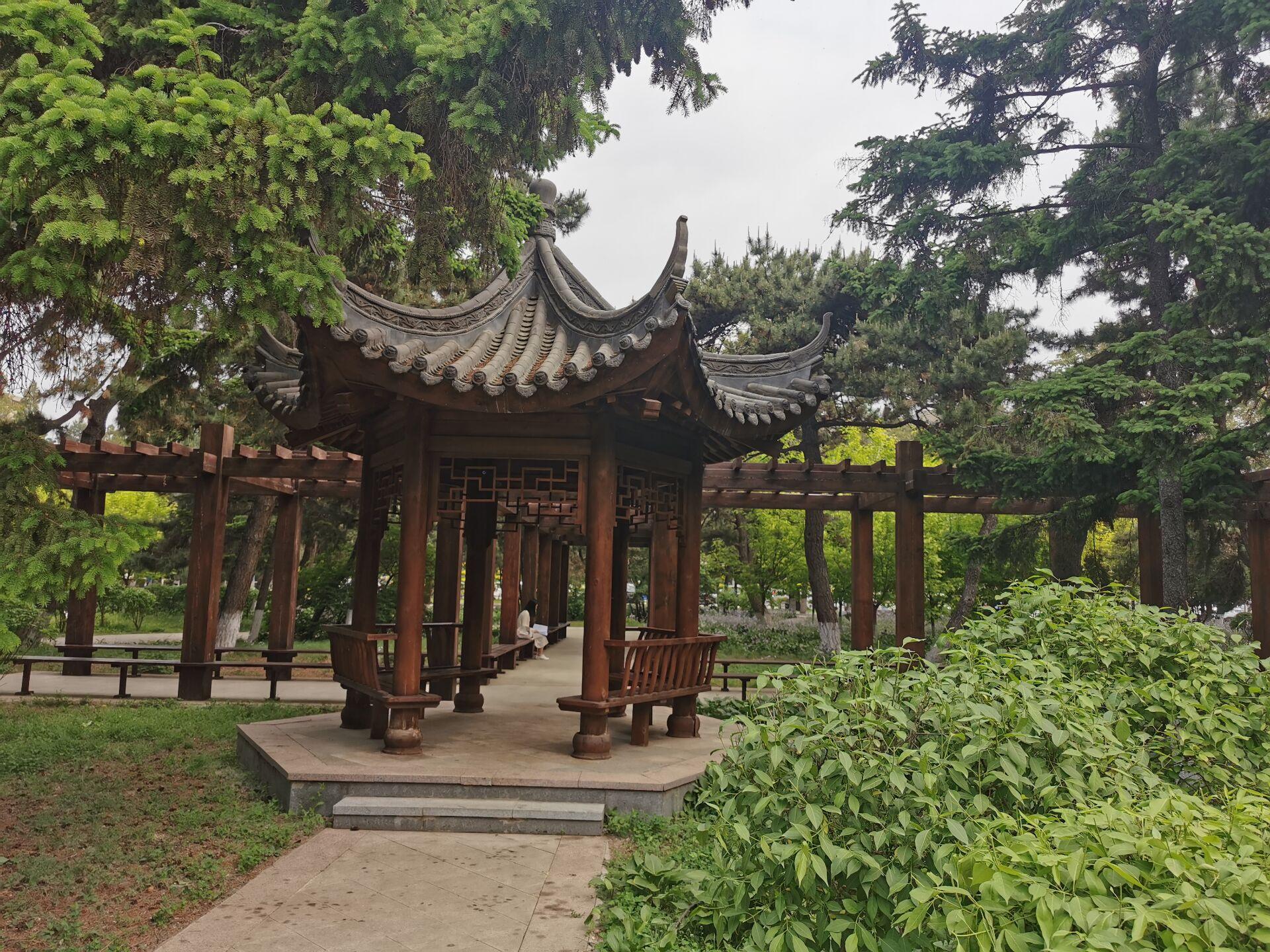 沈阳东北大学中心花园06.jpg