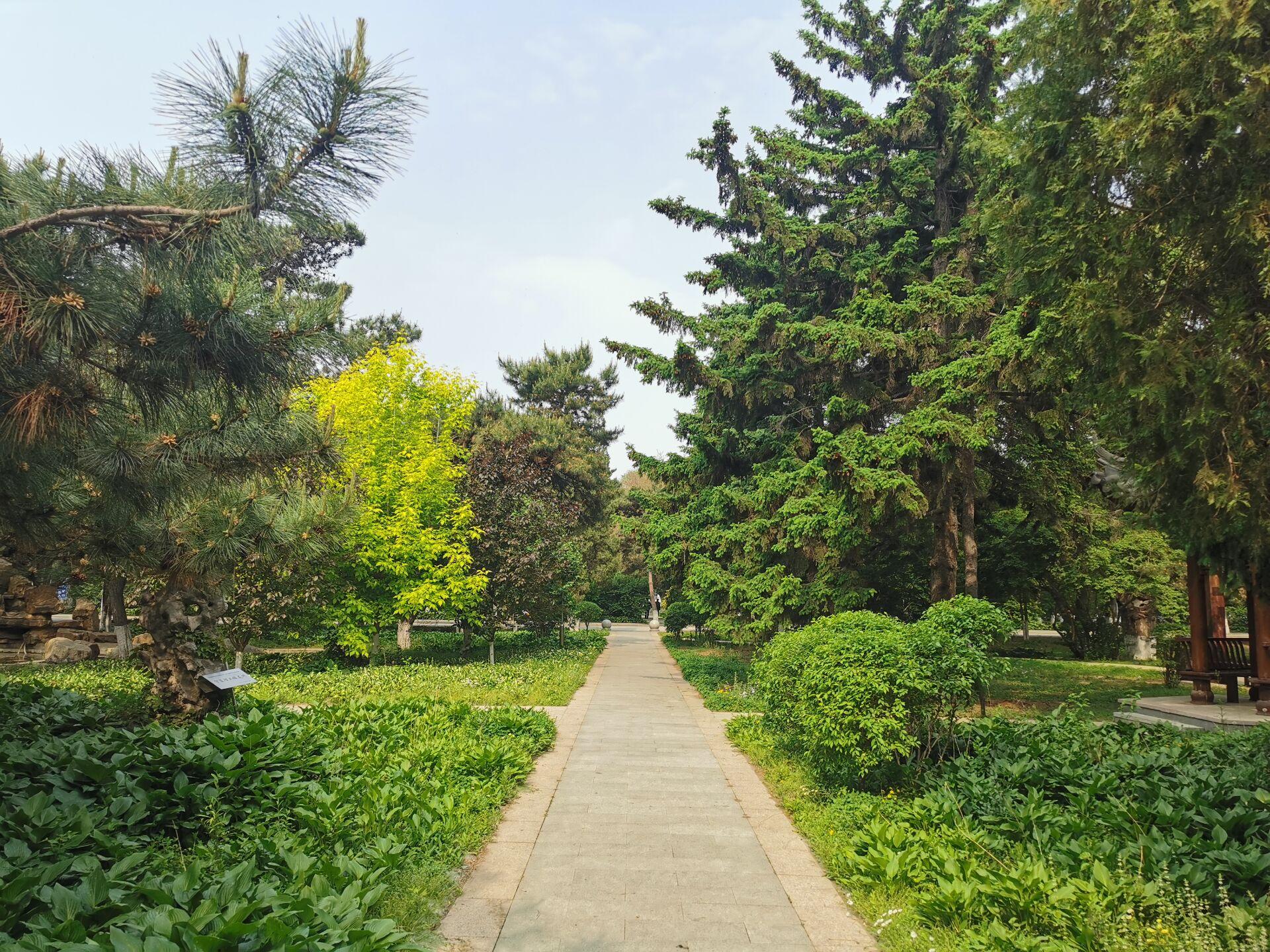 沈阳东北大学中心花园07.jpg