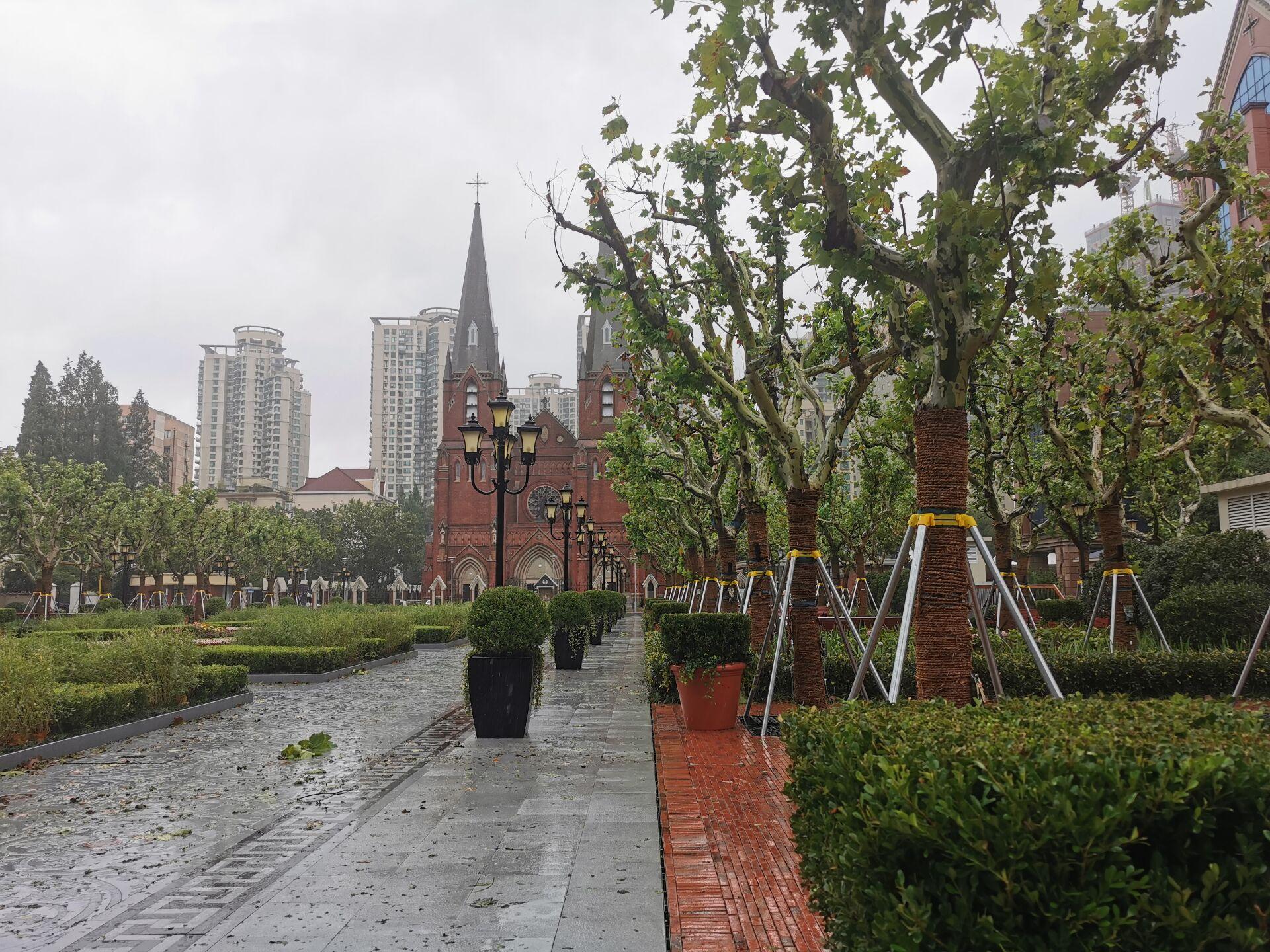 徐家汇教堂广场:台风中和台风后3.jpg