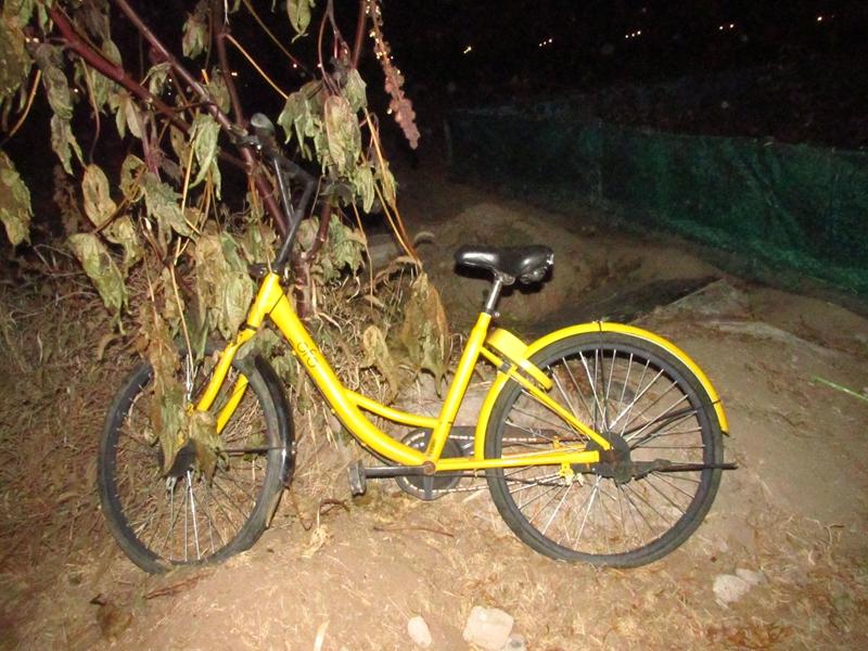 4辆被遗弃的OFO黄色自行车(2018秋,北洋园) 05 IMG_8590_副本.jpg