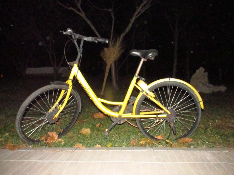 4辆被遗弃的OFO黄色自行车(2018秋,北洋园) 08 IMG_8680_副本.jpg