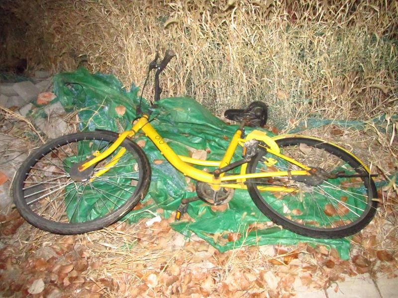 4辆被遗弃的OFO黄色自行车(2018秋,北洋园) 09 IMG_8689_副本.jpg