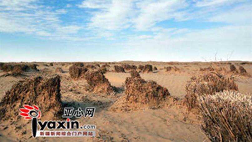 科学网—新疆塔里木盆地真的不缺水吗?