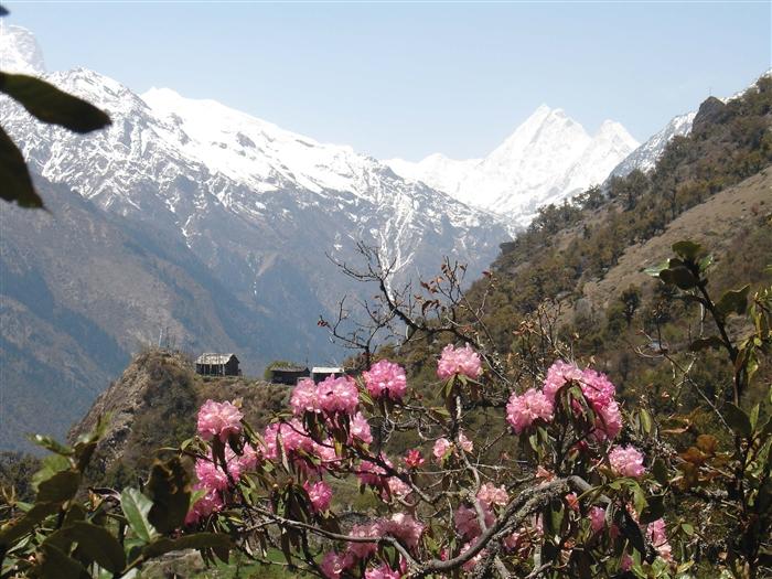 尼泊尔喜马拉雅山区的自然风光