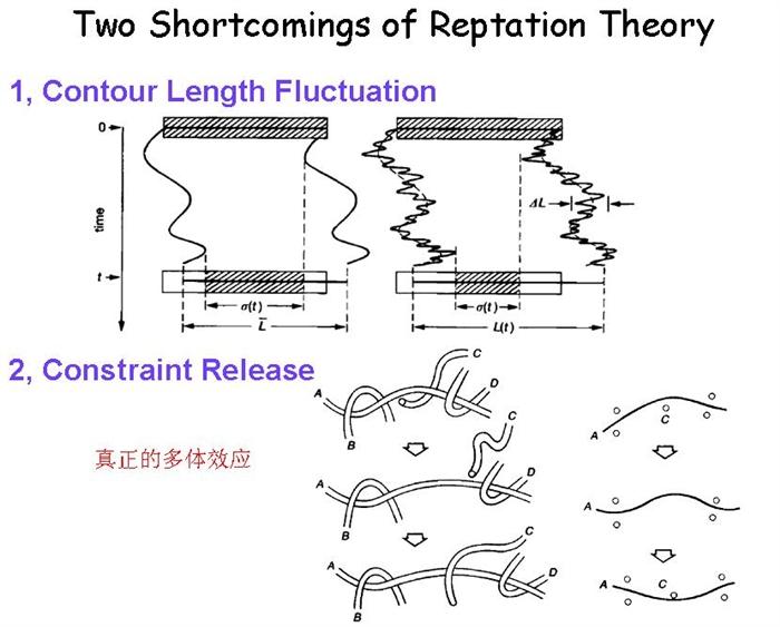 然而Rouse理论和Reptation理论并不能完全解释高分子熔体中所有现象。当高分子链很短的时候可以用Rouse理论来解释,当高分子链及其长的时候可以用Reptation理论来解释。然而处于中间的一大部分的区域无法得到很好的解释。这个时候我们不能仅仅考虑Reptation这一个机理,还需要考虑另外两个很很重要的机理——长度涨落(CLF)和限制脱落(CR)。    为了检验现有的一些管子理论,我们做了大量的计算机模拟。我们发现现有的管子理论都不能给出完全符合计算机模
