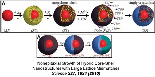 科学网—绘画核壳结构示意图