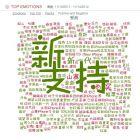 【号外,号外:中文系统的社会网络客户情报内部亮相,很性感嘛】